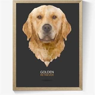 Geometrisk Golden retriever plakat