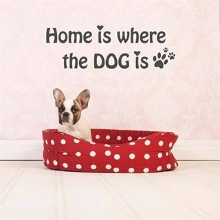 Väggdekor med engelsk text – Home is where the dog is